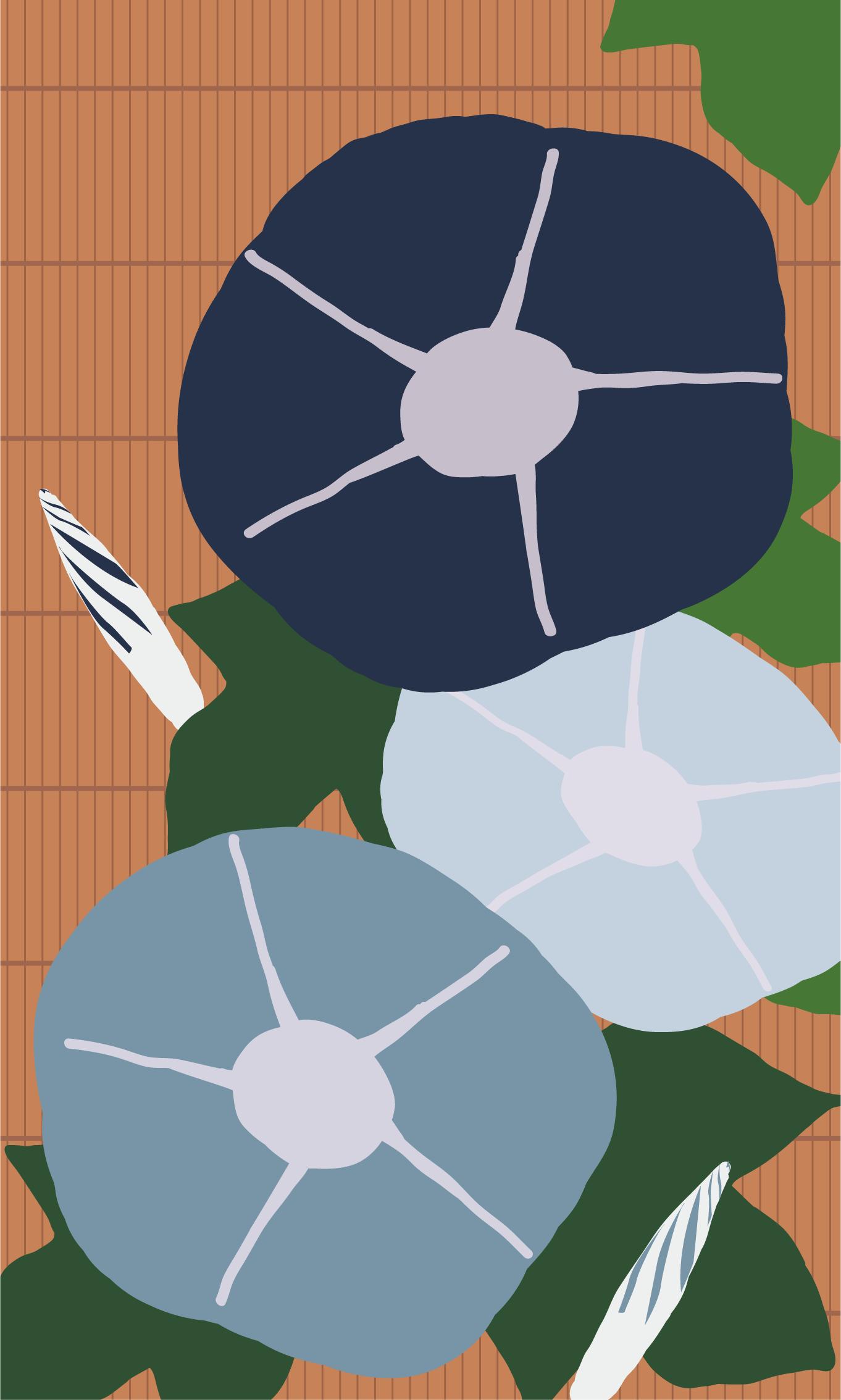 INFOBAR xv用壁紙 | あさがお NASUKON(480x800)