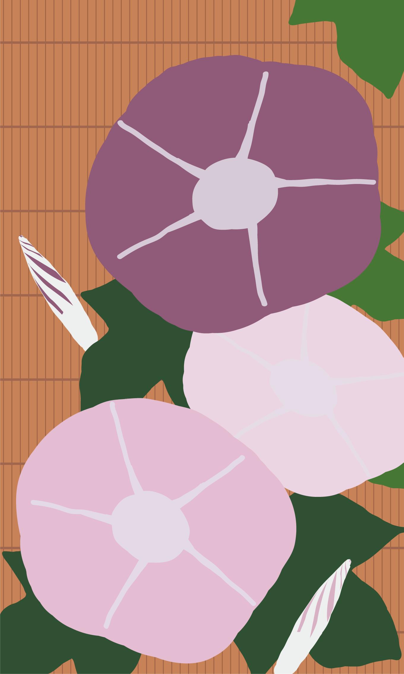 INFOBAR xv用壁紙 | あさがお CHERRY BERRY(480x800)